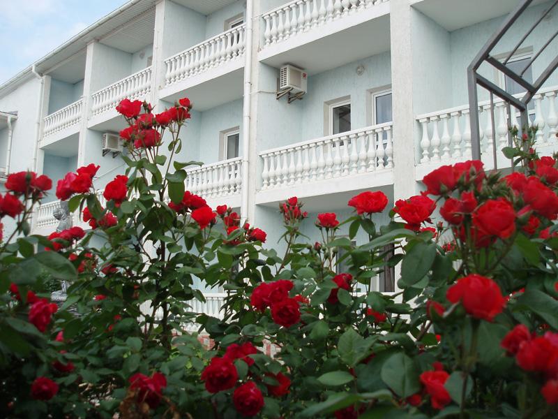 Отель Южный Бриз Штормовое P6100361