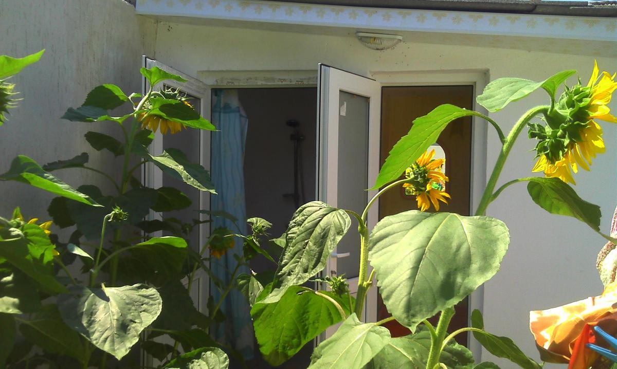 Апартаменты Дом 3 комн. в Евпатории ул Средняя 63 кв 2 Евпатория PIC1165