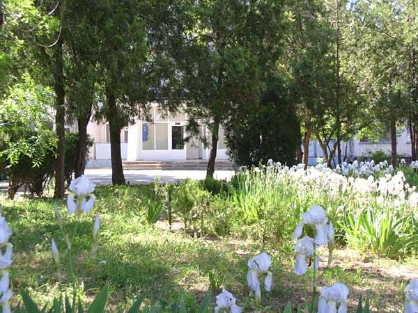 Детский Санаторий Радуга Евпатория территория