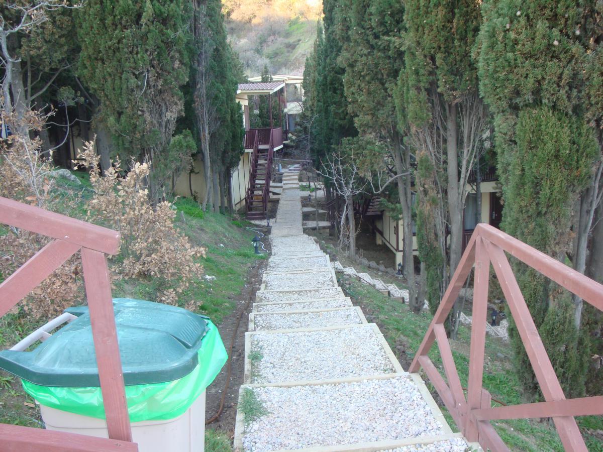 Гостиница Зеленый мыс Резорт Алупка DSC02558