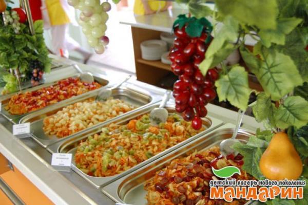 Детский Оздоровительный Лагерь Мандарин Песчаное Питание