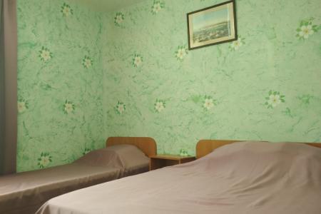 1 комнатный 3 местный номер в коттедже