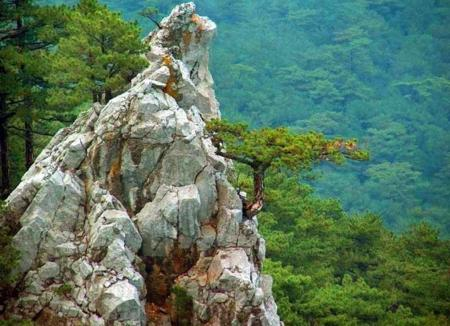 Парки, зоны отдыха, заповедники Ялтинский горно-лесной заповедник
